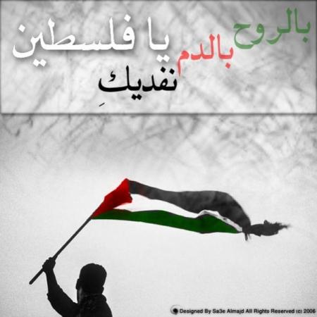 نتيجة بحث الصور عن فلسطين في القلب